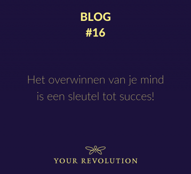 Blog #16