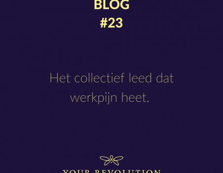 Blog #23